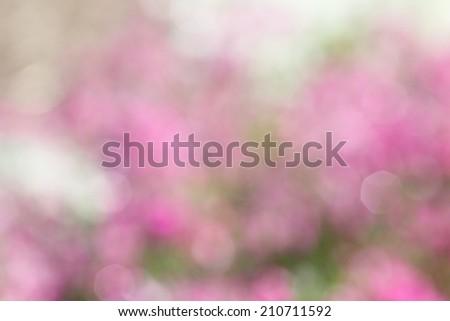 beautiful sweet romantic bright pink bokeh background  - stock photo