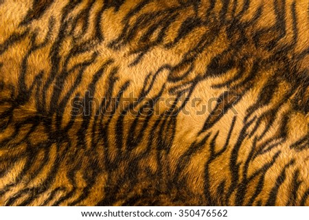 Beautiful tiger fur pattern texture background.