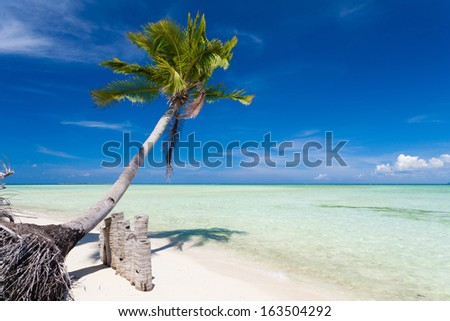 beautiful travel landscape blue hot sun sea dream tropical nature background holiday luxury resort island coral reef water fresh weather paradise concept postcard