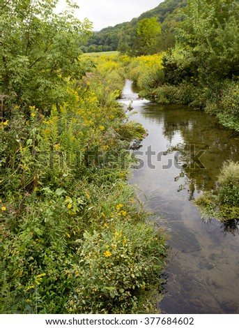 Beautiful tree and wildflower-lined swift, narrow, crystal clear brook and waterfall in Wisconsin, running through a lush field of grass.  Focus point are the flowers on the left side of the brook - stock photo