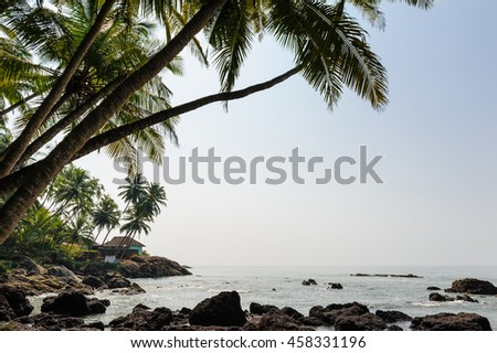 Beautiful tropical beach resort in India. Surrounded by coconut
