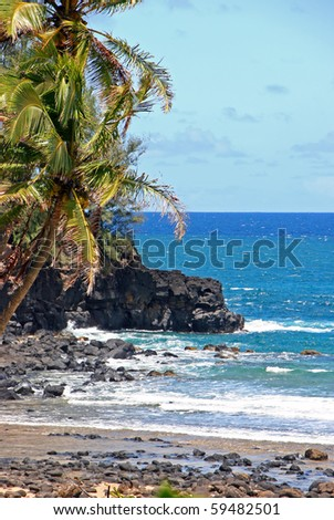 Beautiful Tropical Beach Shoreline Maui Island Hawaii