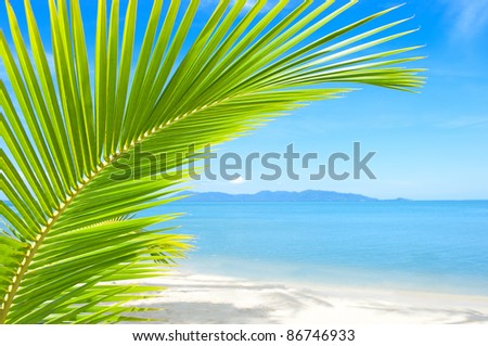 Beautiful tropical beach with palm tree and sand - stock photo