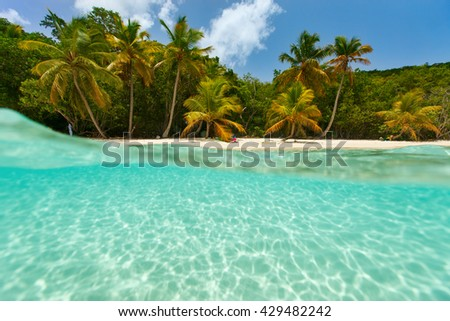 Beautiful tropical beach with palm trees, white sand, turquoise ocean water and blue sky at US Virgin Islands in Caribbean