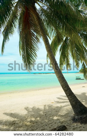 Beautiful tropical beach with palmtrees. - stock photo