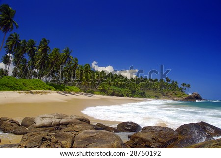 Beautiful tropical breach in the Seychelles with coconut palms and boulders  in the front - stock photo