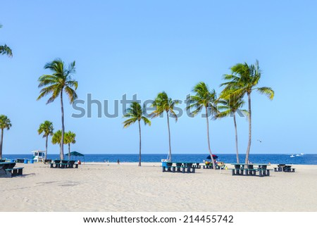 beautiful tropical  Fort Lauderdale beach with coconut trees - stock photo