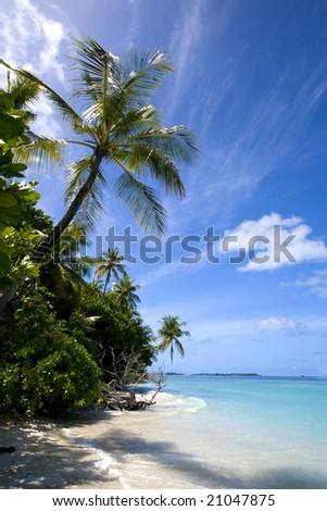 Beautiful tropical island beach scene and shadows