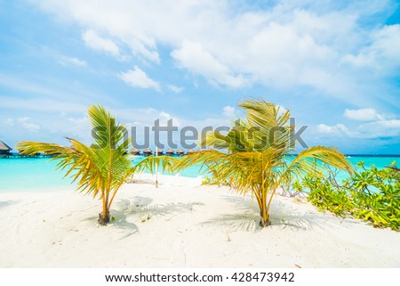 Beautiful tropical Maldives resort hotel and island with beach and sea  and coconut palm tree on sky for holiday vacation background concept - Boost up color Processing
