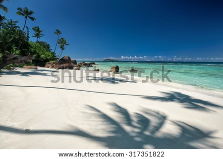 Beautiful tropical sandy beach with a shadow of the coconut palm tree / outdoors photography of picturesque Seychelle islands