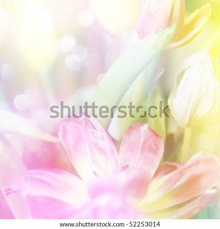 beautiful tulips made with color filters and glitters - stock photo