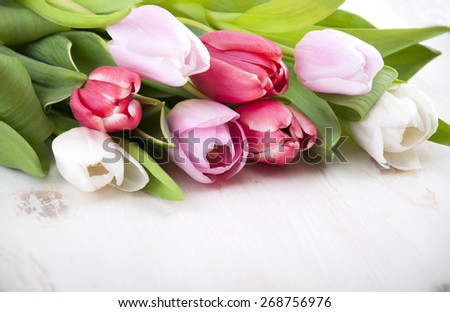Beautiful tulips on a white wooden background