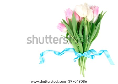beautiful tulips tied with a blue ribbon on a white isolated background