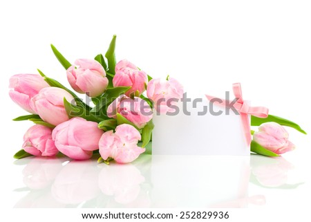 beautiful tulips with with blank for text on a white background. happy mothers day, romantic still life, fresh flowers - stock photo