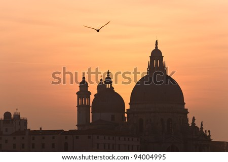 Beautiful Venice, Grand Canal famous church of Santa Maria della Salute at sunset with seagull - stock photo