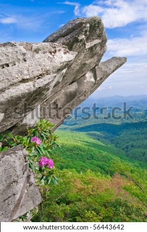 Beautiful view from the Blue Ridge Parkway showing the native Catawba Rhododendron in full bloom on a rocky outcropping. - stock photo