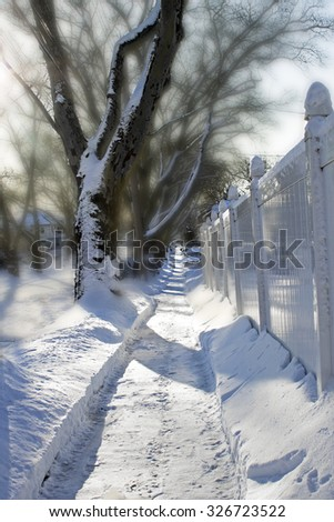 Beautiful view of  a path in the snow. Tall trees along a the path on one side, tall white fence on the other.