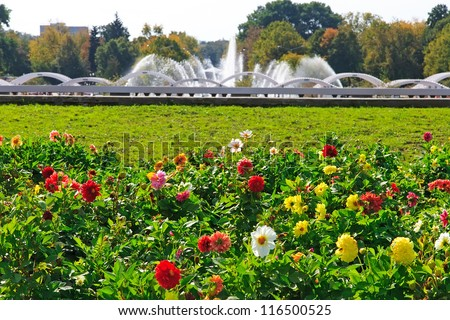 Beautiful View Of Flowers And Fountain As Background In The Park Moscow Russia