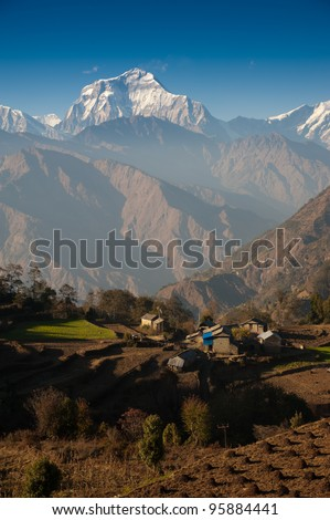 Beautiful view of green field, local house and Himalayan mountains when see during Poonhill peak trekking way, Nepal - stock photo