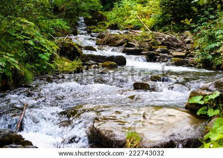 Beautiful view of mountain river in summer - stock photo