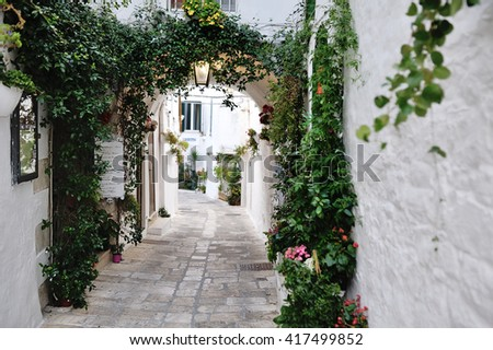 beautiful view of scenic narrow alley with plants, Ostuni, Apulia, southern Italy - stock photo