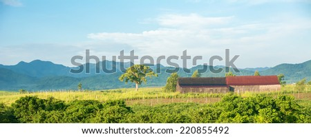 Beautiful view of the Cuban countryside with a lot of green and blue colors. Large copyspace in picture. - stock photo