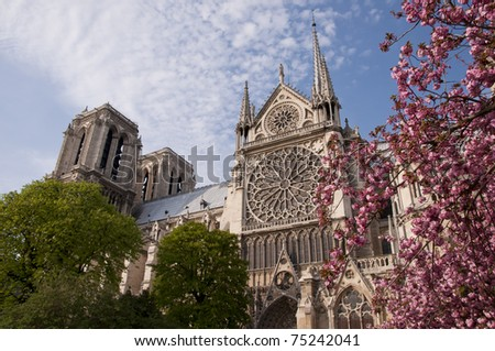 Beautiful view of the Notre Dame with blossoms - stock photo