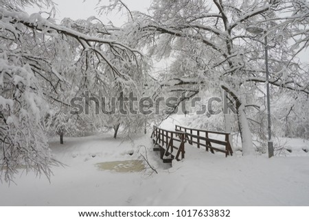Beautiful view of the park and wooden bridge after heavy snowfall in Moscow, Medvedkovo district.