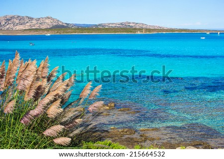 Beautiful view of the turquoise clear sea on Sardinia - stock photo