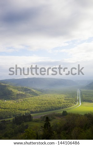 Beautiful view on Motovun forest