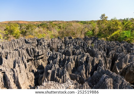 Beautiful view on the unique geography at the Tsingy de Bemaraha Strict Nature Reserve in Madagascar - stock photo