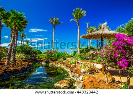 Beautiful view to tropical island resort garden with palm trees, flowers and river on Fuerteventura, Canary Island.  - stock photo