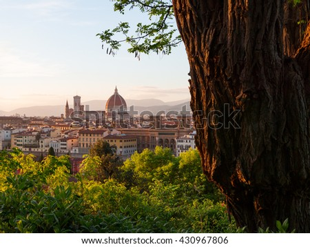Beautiful views of Florence cityscape in the background Cathedral Santa Maria del Fiore at sunset in Italy, Europe - stock photo