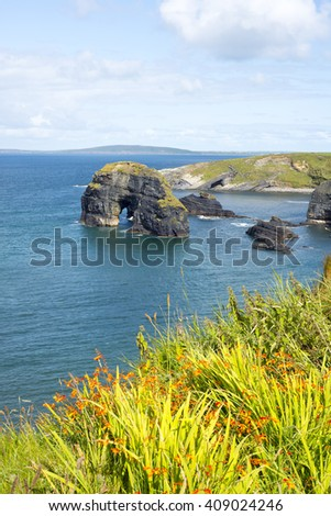 beautiful views of the virgin rocks with tall grass and flowers on the wild atlantic way - stock photo