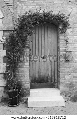 Beautiful vintage door and creeper,Tuscany, Italy, Europe (black and white) - stock photo