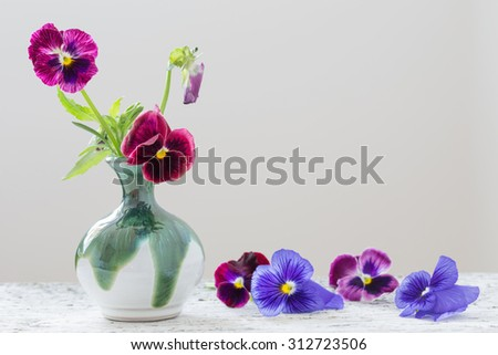 beautiful violet flowers on white background - stock photo