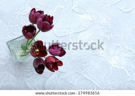 Beautiful violet tulips in glass vase on light background - stock photo