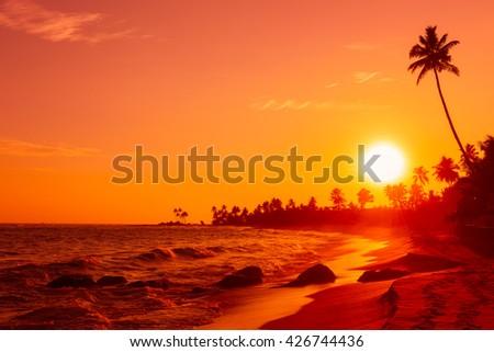 Beautiful warm sunset on tropical ocean beach - stock photo