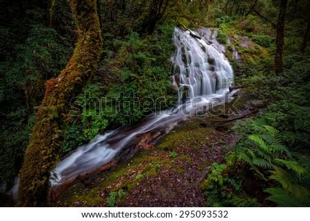 Beautiful waterfall at doi inthanon national park, Thailand - stock photo