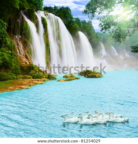 Beautiful waterfall at sunny day. Swans on the foreground - stock photo