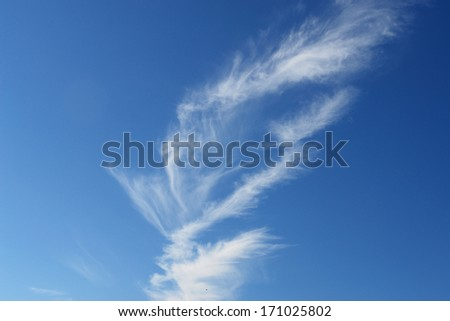 beautiful weather clouds in the sky - stock photo