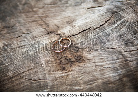 Beautiful wedding rings lie on a wooden stump