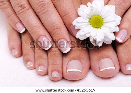 Beautiful well-groomed female toes with flowers - stock photo