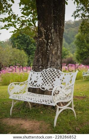 Beautiful white chair under tree in garden, Thailand - stock photo