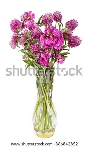 Beautiful Wild Flowers Bouquet. Wildflowers in vase - stock photo