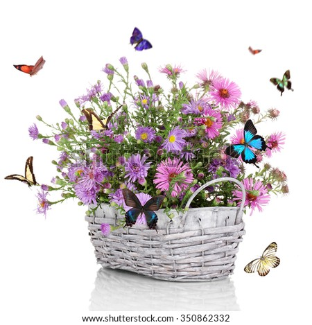 Flores Púrpura - FTD Flores, Rosas, Plantas y Cestas de Regalo ...