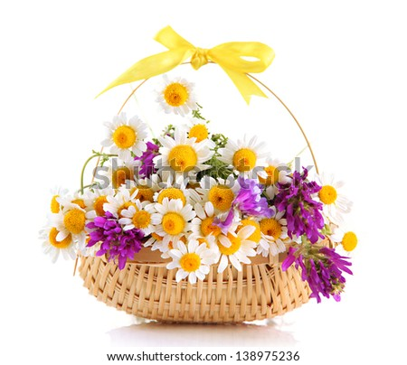 Beautiful wild flowers in basket, isolated on white - stock photo