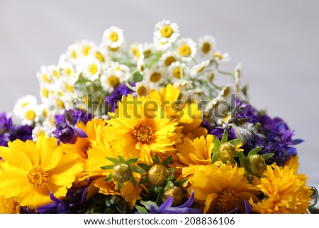 Beautiful wild flowers on light background - stock photo