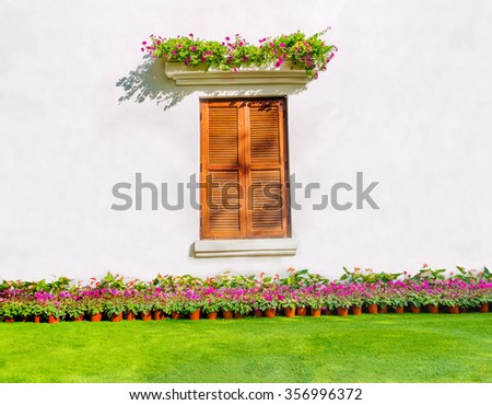 beautiful window on colorful flowers with free space