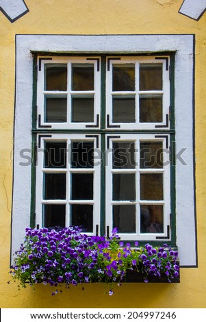 Beautiful window with flower box and shutters - stock photo